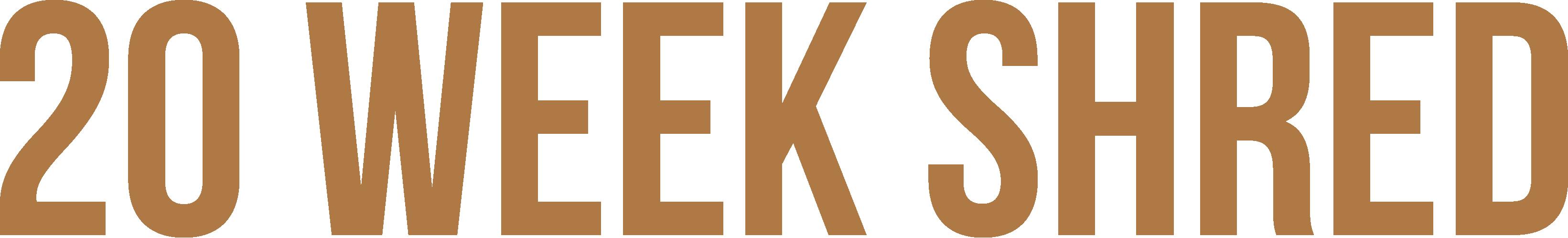 20-week-logo